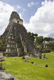 Temple 1. In the plaza mayor, Tikal, Guatemala Royalty Free Stock Images