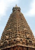 Temple. Hindhu temple top view in south india Royalty Free Stock Images