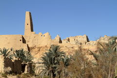 The Temple of Ammon in the oasis town of Siwa Stock Photography