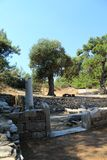 Temple. Ancient temple in Thassos island Stock Photography