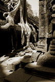 Temple Angkor de bouddhisme Image libre de droits