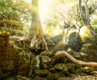 Temple in Angkor Thom, Cambodia Royalty Free Stock Images