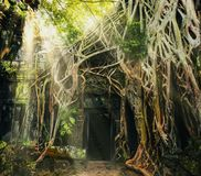 Temple in Angkor Thom Stock Photo