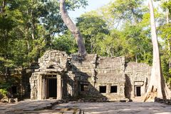 Temple in Angkor Thom Royalty Free Stock Image