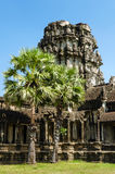 The temple of Angkor Wat, Siem Reap.Cambodia Royalty Free Stock Photography