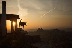 Temple antique au ciel de coucher du soleil image stock