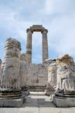 In the Temple of Apollo Stock Photos