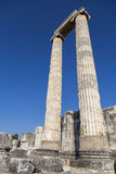 Temple of Apollo columns in Didyma antique city Didim Turkey 2014 Royalty Free Stock Image