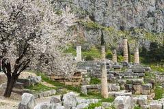 The Temple of Apollo Royalty Free Stock Photos