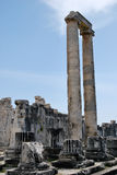 The temple of Apollo in Didim Royalty Free Stock Photography