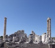 Temple of Apollo. Didim (Turkey Royalty Free Stock Photography