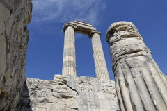 Temple of Apollon - Didyma / Turkey Stock Images