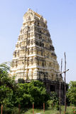 Temple architecture,South India Royalty Free Stock Photos