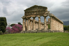 Temple of Athena in Paestum. Stock Photo