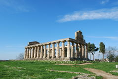 Temple of Athena in Paestum Stock Image