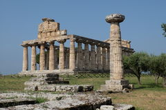 Temple of Athena. In Paestum Royalty Free Stock Photography
