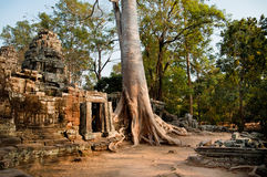 Temple Banteay Kdei Stock Photography