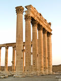 Temple of Bel Palmyra Royalty Free Stock Photos