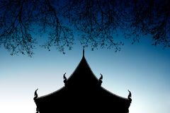 Temple and branch silhouett. E with dark blue sky Stock Images
