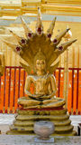 Temple buddha Royalty Free Stock Images