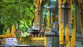 Temple buddha under the trees. Buddhism in Asia. candles and flowers. place of religious worship of believers.  stock video footage