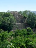 Temple at Calakmul. A mayan archaeological site in the mexican state of Campeche royalty free stock photo