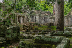 Temple in the Cambodian Jungle. The Angkor complex is extensive and inspiring Royalty Free Stock Photography