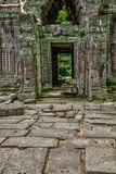 Temple in the Cambodian Jungle Stock Images