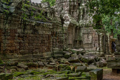 Temple in the Cambodian Jungle Royalty Free Stock Photo