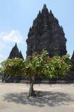 Temple/Candi Prambanan di Prambanan immagine stock libera da diritti