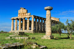 Temple of Ceres (Athena) Stock Photos