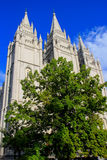 Temple of The Church of Jesus Christ of Latter-day Saints in Sal Royalty Free Stock Photo