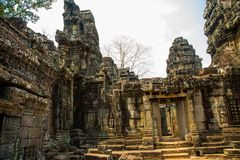 The temple complex of Angkor. Royalty Free Stock Photos