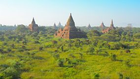 The temple complex of Bagan at sunset. Burma stock video footage