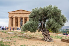 Temple of Concord Agrigento Royalty Free Stock Photography
