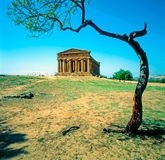 Temple of Concord, Sicily Royalty Free Stock Photography