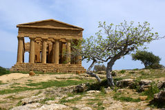 Temple of concordia Stock Photos