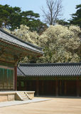 Temple courtyard. Courtyard of a Buddhist monastery royalty free stock images
