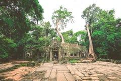 Temple d'Angkor Wat au Cambodge images libres de droits
