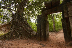 Temple d'Angkorian dans la jungle Photo stock