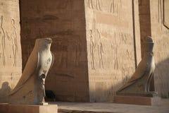 Temple d'Edfu de Horus Egypte photographie stock