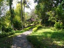 Temple dans la jungle sur Bali Image libre de droits