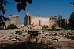 Temple de Bacchus, Baalbeck Photographie stock libre de droits