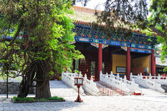 Temple de Confucius, Pékin, Chine image stock
