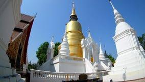 Temple de temple de dok de Suan beau dans le chiangmai, lentille grande-angulaire de la Thaïlande banque de vidéos
