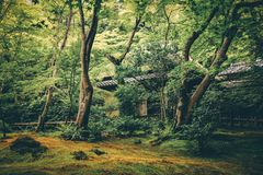 Temple de Gion, Kyoto, Japon photo stock