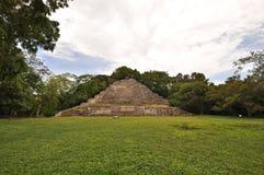 Temple de jaguar Image libre de droits