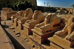 Temple de Karnak à Luxor images stock
