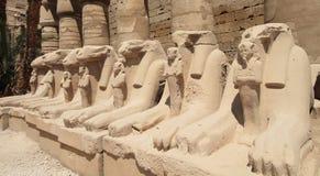 Temple de Karnak en Egypte Photo stock