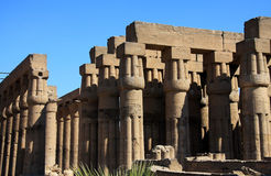 Temple de Luxor Images stock